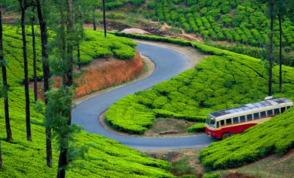 Tour from Visakhapatnam to Munnar