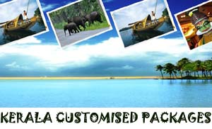 kerala customised tour packages