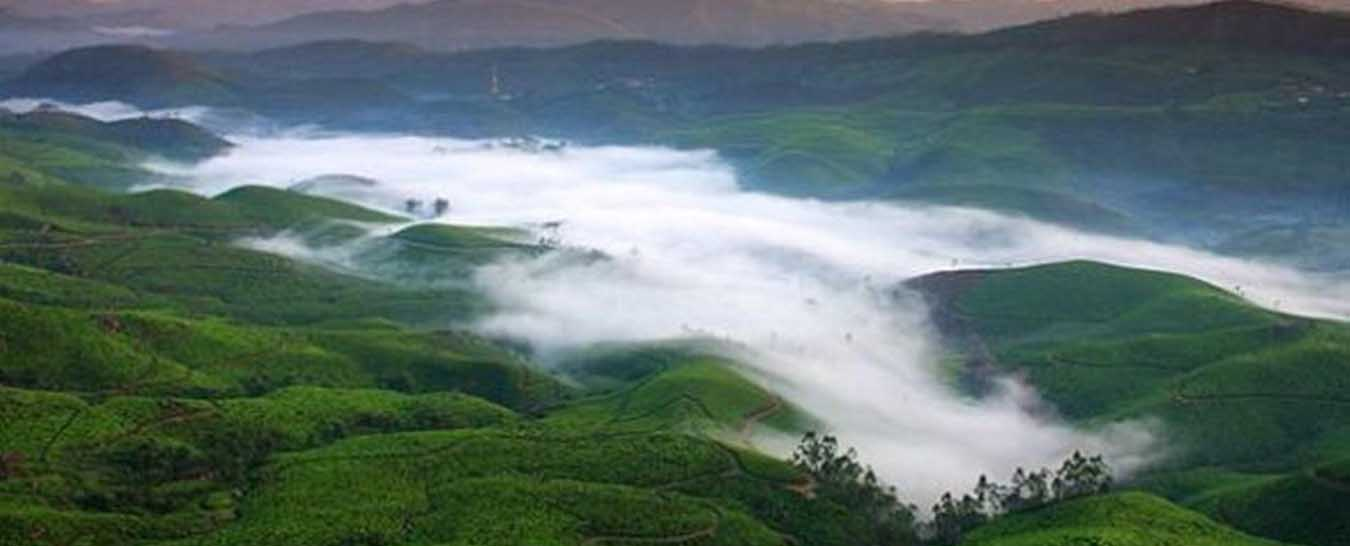 munnar tourism packages
